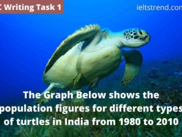 The Graph Below shows the population figures for different types of turtles in India from 1980 to 2010