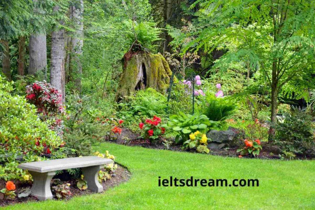 Describe a Garden or Park You Remember (5) (1)